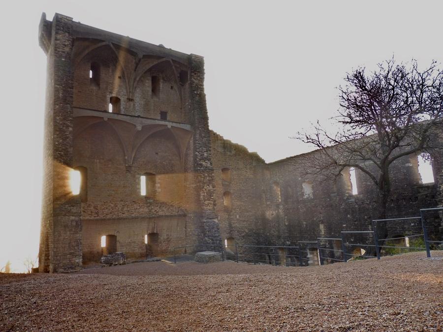 chateau neuf du pape4